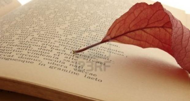 Ricordo di Settimio Cambio, muratore poeta