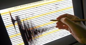 I rilievi dei sismografi