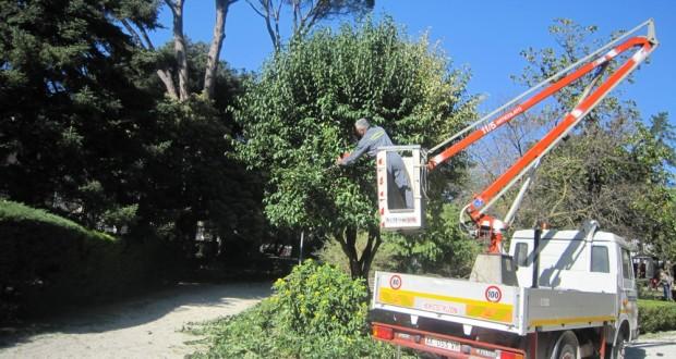 Operai in azione ai giardini pubblici