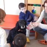 Uno dei cani in visita all'asilo