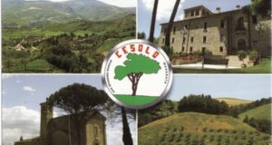 "Una ""cartolina"" da Cesolo"