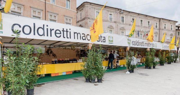 La Mostra in piazza (immagine di Foto studio style)