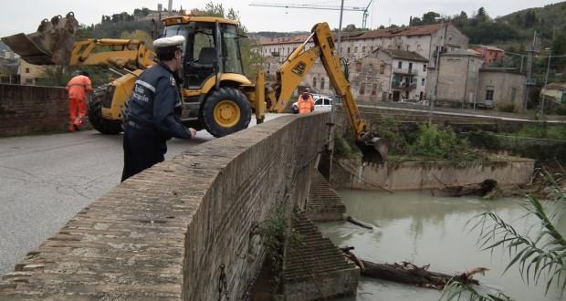 La rimozione dei tronchi al Ponte Sant'Antonio