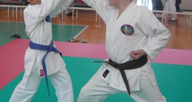 Esibizione di karate in un palasport