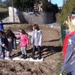 L'orto nel cortile della scuola di Cesolo