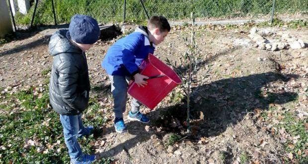 Bambini impegnati nell'orto