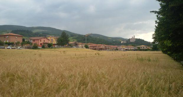 Il terreno in cui sorgerà il villaggio di casette