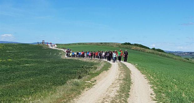 Pellegrini in cammino sull'antica via romano-lauretana