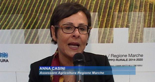 La vice presidente della Regione Marche, Anna Casini