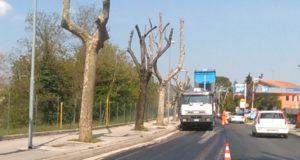 Lavori di asfaltatura lungo via San Michele