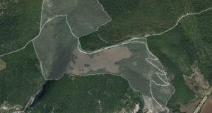 Area di rilevanza erpetologica