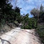 Strada bloccata a Colmartino