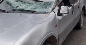 L'auto colpita dall'albero abbattuto dal vento