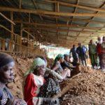 L'incontro con i lavoratori ciechi che fabbricano mattoni a mano