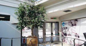 L'ingresso del Centro medico Blugallery