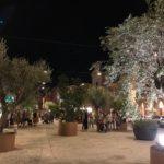 Piazza del Popolo con gli elementi arborei del progetto