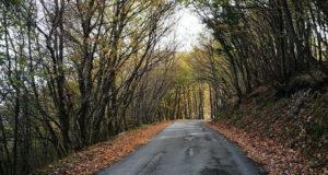 Strada Elcito-Canfaito