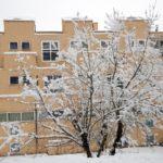 Le scuole chiuse