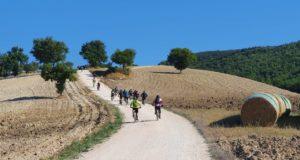 Gli amici dell'associazione Bike Zone sui pedali