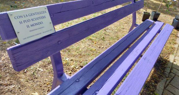La panchina viola