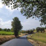 Uno dei tratti di strada sistemati dal Comune