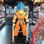 Un negozio di videogiochi